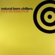 Natural Born Chillers - Rock The Funky Beat (Original Version)
