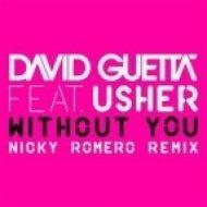 David Guetta feat. Usher - Without You  (Nicky Romero Remix)