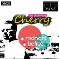 Cherry Aka Breakntune - Midnight (Original Mix)