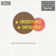 Cherry Aka Breakntune, Deakaluka - Sensation  (Original Mix)