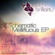 Schematic - Im Losin You ()