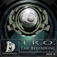 Tro - The Beginning  (Physical Bross Remix)