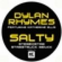 Dylan Rhymes feat. Katherine E - Salty  (Meat Katie Remix)