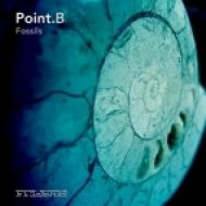 Point B - Fossils  (Kuoyah Visions Mix)