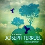 Joseph Terruel - The Jazzy Dub Sensation ()