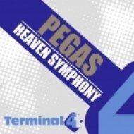 Pegas - Heaven Symphony  (Original Mix)