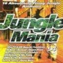 Barrington Levy & Beenie Man - Under Me Sensi (Jungle Spliff)  (X Project Mix)