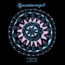 Gagarin Project - Psybient Love ()