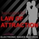 Amin Keyhan And Bez - Law Of Attraction  (Original Mix)