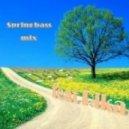 DSG feat Rika - spring bass mix ()