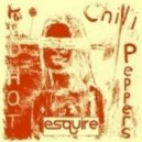 Red Hot Chilli Peppers - By The Way  (eSQUIREs DiscoLoop Remix)