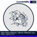 Cassimm - Without You  (Original Mix)