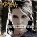 Ke$ha - Animal  (Soapbox Surgeon Remix)