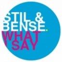 Stil & Bense - What I Say  (Dayne S Remix)