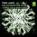 Tom Laws  - Vindavadge  (Original Mix)