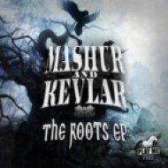 Mashur & Kevlar - Fly  (Original Mix)
