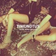 Tiniundtus - Hauptbahnhof  (Original Mix)