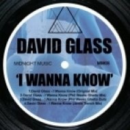 David Glass - I Wanna Know  (Phil Weeks Ghetto Mix)