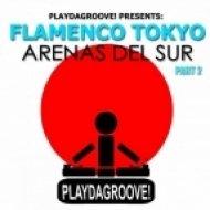 Flamenco Tokyo - Arenas Del Sur  (Club Edit)