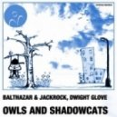 Balthazar & JackRock & Dwight Glove - Owls And Shadowcats  (Balthazar & JackRock mix)