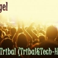 DJ Geegel - This is a Tribal  (Tribal&Tech-House Mix)