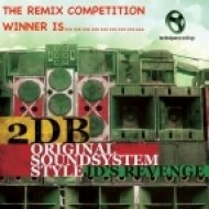 2DB - Original Sound System Style  (Stay Out Remix)
