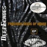 DeepEchoes - Lost In The Lead  (Original Mix)