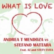 Andrea T Mendoza Vs Stefano Mattara feat AJ - What Is Love  (Radio)