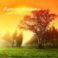 Synthetic Sunrise - Vibrations Of Universe ()