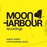 Sable Sheep - Torn to Pieces  (Original Mix)