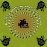DJ Hybrid - Down Low ()