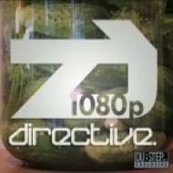 Directive - Now You Know! ()