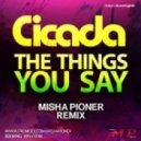 Cicada - The Things You Say  (Misha Pioner Remix)