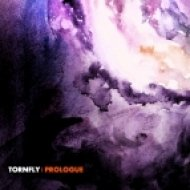 TORNFLY - Arousal ()