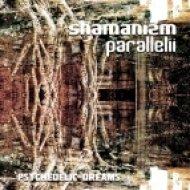 Shamanizm Parallelii - Space Calling  (Original Mix)