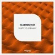 Macromism - What\'Z Up  (Original Mix)
