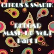 David Guetta feat. Ne-Yo vs. Bsharry - Play Hard  (Citrus & Snapik Mash-Up)