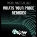 Profe - Whats Your Price   (Auditech Remix)