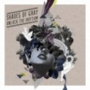 Shades Of Gray - Disappear with You  (Original Mix)