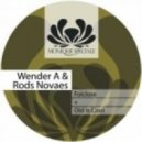 Rods Novaes & Wender A.  -  Old Is Cool  (Original mix)