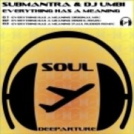 DJ Umbi, Submantra, Paul Rudder - Everything Has A Meaning  (Paul Rudder Remix)