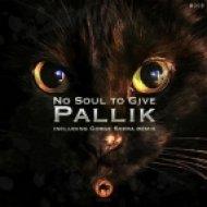 Pallik - No Soul To Give  (Original Mix)