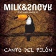 Milk & Sugar - Canto Del Pilon  (Strong R. Remix)