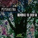Psyshastra - Psychobabble (Original mix)