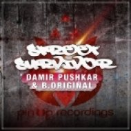 Damir Pushkar, B.Original - Street Survivor (Original Mix)