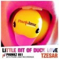 Tzesar - Little Bit Of Duck Love (Original Mix)