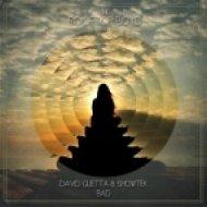 David Guetta & Showtek - Bad (The Rooftop Boys Remix)