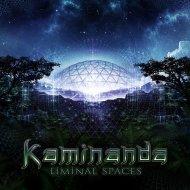 Kaminanda - Moment to Moment (Original mix)