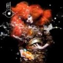 Bjork - Moon (Experimental Feelings Private Remix)