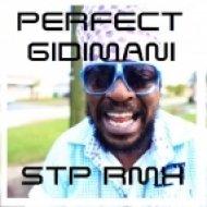 Perfect Giddimani - Your Fault (Dj STP Remix)